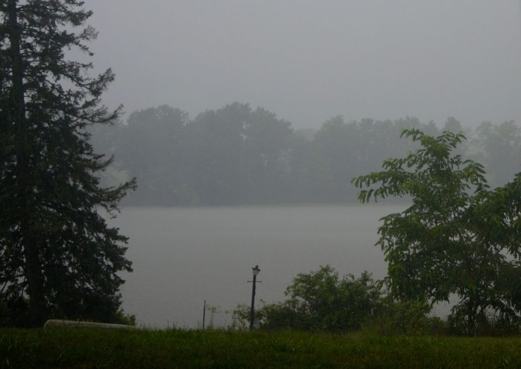 Rain glorious rain - Red Mill Pond - July 30, 2016